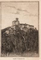 1887 Incisione