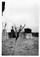 La cisterna nel cortile del Castello